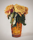 Wilted roses in a vase Royalty Free Stock Image