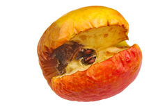 Wilted rotten apple isolated on a white background Royalty Free Stock Photography