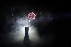 A wilting rose signifies lost love, divorce, or a bad relationship, dead rose on dark background Royalty Free Stock Photography
