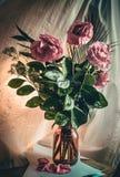 Wilting roses Stock Photos