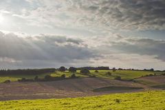 Wiltshire countryside Royalty Free Stock Photography