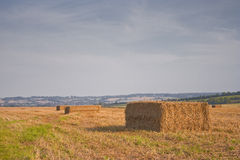 Wiltshire hay bales Royalty Free Stock Photos