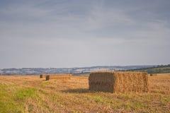 Wiltshire-Heuballen Lizenzfreie Stockfotos