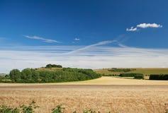 Wiltshire krajobraz Zdjęcia Royalty Free