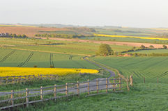 Wiltshire landscape Royalty Free Stock Image