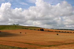 Wiltshire landscape Royalty Free Stock Photography