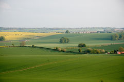 Wiltshire landscape Royalty Free Stock Images