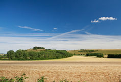 Wiltshire landscape Royalty Free Stock Photos