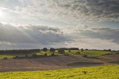 Wiltshire-Landschaft Lizenzfreie Stockfotografie