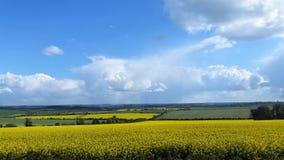 Wiltshire-Landschaft und -ackerland Großbritannien Lizenzfreie Stockfotos
