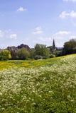 Wiltshire pintoresco, abadía de Malmesbury Imagen de archivo