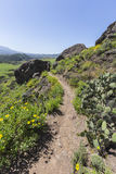 Wilwood公园供徒步旅行的小道在绍森欧克斯加利福尼亚 免版税库存照片