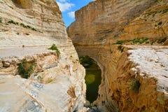 Wim Avdat National Park royalty-vrije stock afbeeldingen