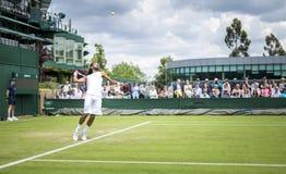 Wimbledon所有英国网球冠军2016年,伦敦- 1 免版税库存照片