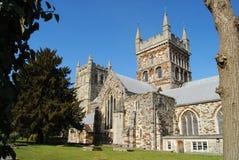 Wimborne大教堂教会 免版税库存照片