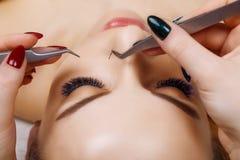 Wimper-Erweiterungs-Verfahren Frauen-Auge mit den langen blauen Wimpern Ombre-Effekt Schlie?en Sie oben, selektiver Fokus lizenzfreies stockbild