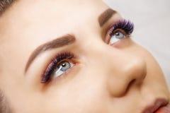 Wimper-Erweiterungs-Verfahren Frauen-Auge mit den langen blauen Wimpern Ombre-Effekt Schlie?en Sie oben, selektiver Fokus lizenzfreie stockbilder
