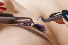 Wimper-Erweiterungs-Verfahren Frauen-Auge mit den langen blauen Wimpern Ombre-Effekt Schlie?en Sie oben, selektiver Fokus stockbilder