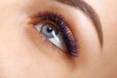 Wimper-Erweiterungs-Verfahren Frauen-Auge mit den langen blauen Wimpern Ombre-Effekt Schlie?en Sie oben, selektiver Fokus stockfotos