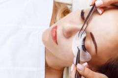 Wimper-Erweiterungs-Verfahren Frauenauge mit den langen Wimpern Peitschen, Abschluss oben, Makro, selektiver Fokus stockfotos