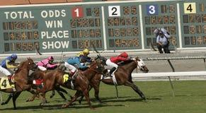 Win, plaats, toon! Royalty-vrije Stock Afbeelding