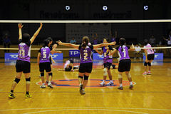 The win volleyball players chaleng Stock Photo