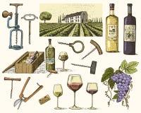 Wina żniwa produkty, prasa, winogrona, winnicy corkscrews szkło butelki dla menu i signage w barze grawerujący Fotografia Royalty Free
