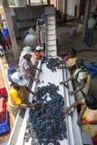 Wina robić proces z czerwonymi winogronami Obrazy Stock