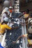 Wina robić proces z czerwonymi winogronami Obraz Stock