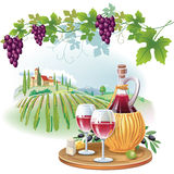 Wina szkła, butelka i winogrona w winnicy, Obrazy Stock
