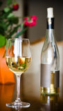 Wino butelka i szkło Obraz Royalty Free