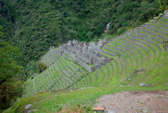 The Winay Wayna ruins on the Inca Trail Royalty Free Stock Photography
