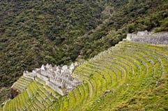 Winay Wayna terraces. Amazing ruins and terraces at Winay Wayna, Peru royalty free stock images