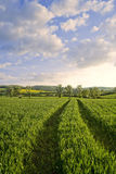 Winchcombe The Cotswolds Royalty Free Stock Images