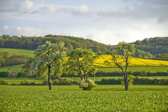 Winchcombe The Cotswolds Glouc Royalty Free Stock Photos