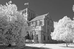 Winchester Cathedral. The cathedral of winchester, england, taken infrared blackandwhite Royalty Free Stock Images