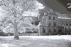 Winchester Cathedral. The cathedral of winchester, england, taken infrared blackandwhite Stock Images