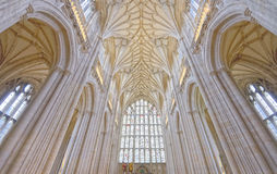Winchester cathedral vaulting Royalty Free Stock Photos
