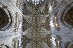 Winchester-Kathedralendecke Lizenzfreies Stockbild