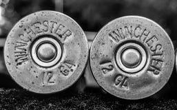 Winchester 12 Shells van het Maatjachtgeweer stock fotografie
