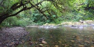 Winchuck-Fluss Oregon Lizenzfreie Stockbilder