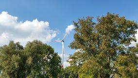 wind Royalty-vrije Stock Fotografie