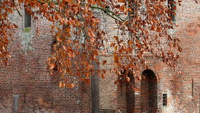 Wind through the autumn beech leaves, Holland. Nijenbeek Castle was built around 1230 in a strategic position on the IJssel River and was an important part of stock footage