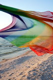 Wind on the beach. Stock Photography