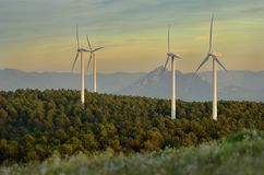 The Wind Beasts. View of some eolic turbines coming out of the forest in the Oil mountain in Bizkaia Stock Photos