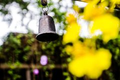 Wind bell and yellow orchids as background. Stock Images