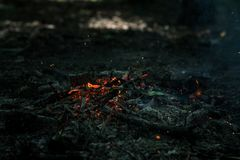 Wind is blowing on coals. After bonfire Royalty Free Stock Photos