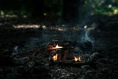 Wind is blowing on coals. After bonfire Royalty Free Stock Image