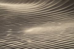 Wind blowing over sand dunes Stock Photography