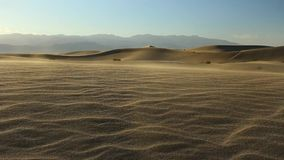Wind blowing on sand dunes stock video